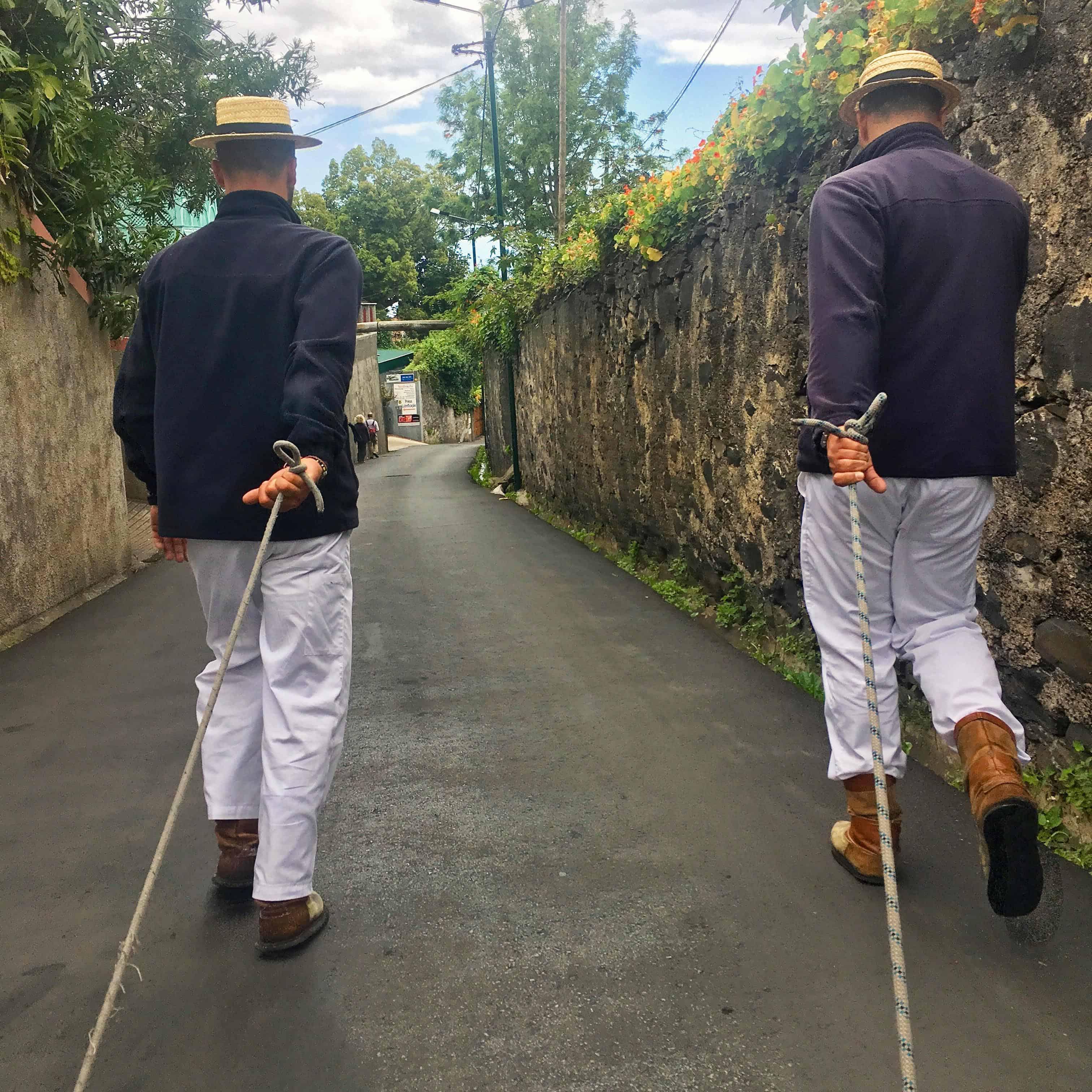 Riding in the toboggan, Madeira