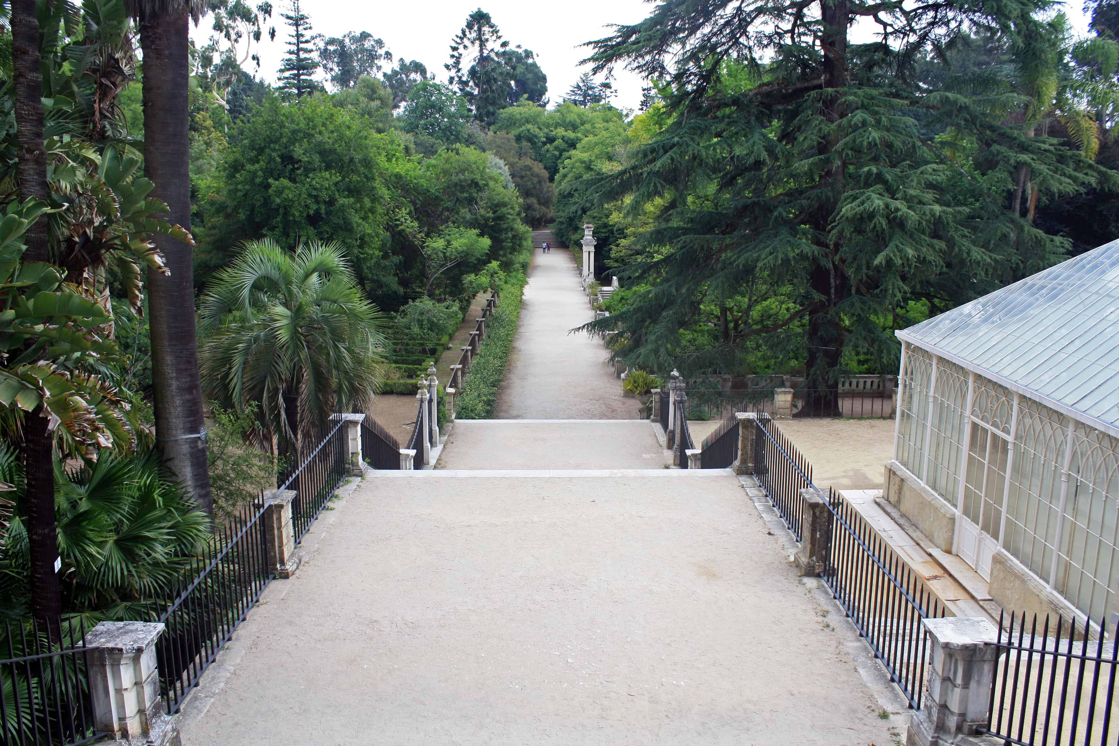 Botanical Garden of the University of Coimbra