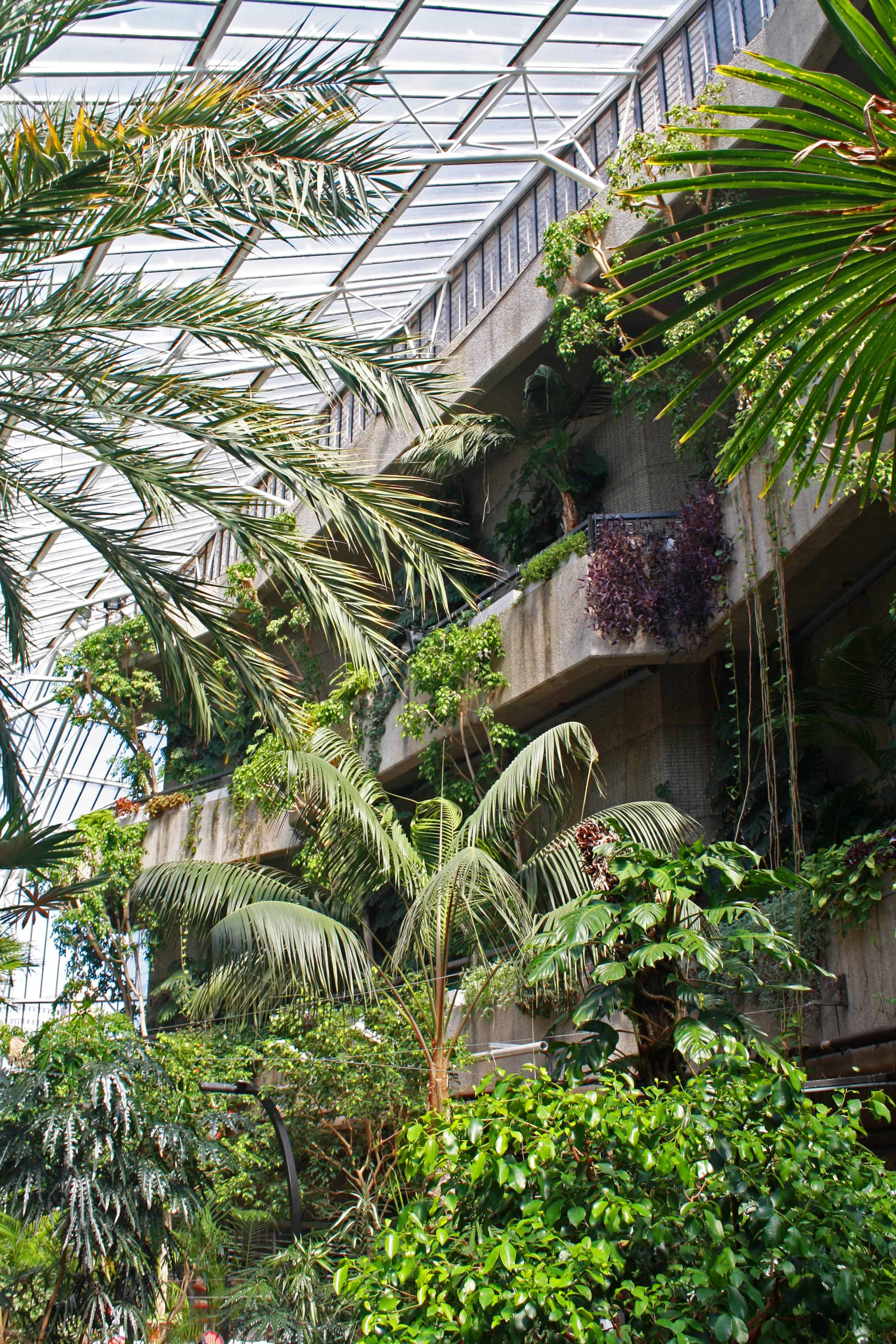 View at the entrance of Barbican Conservatory, London