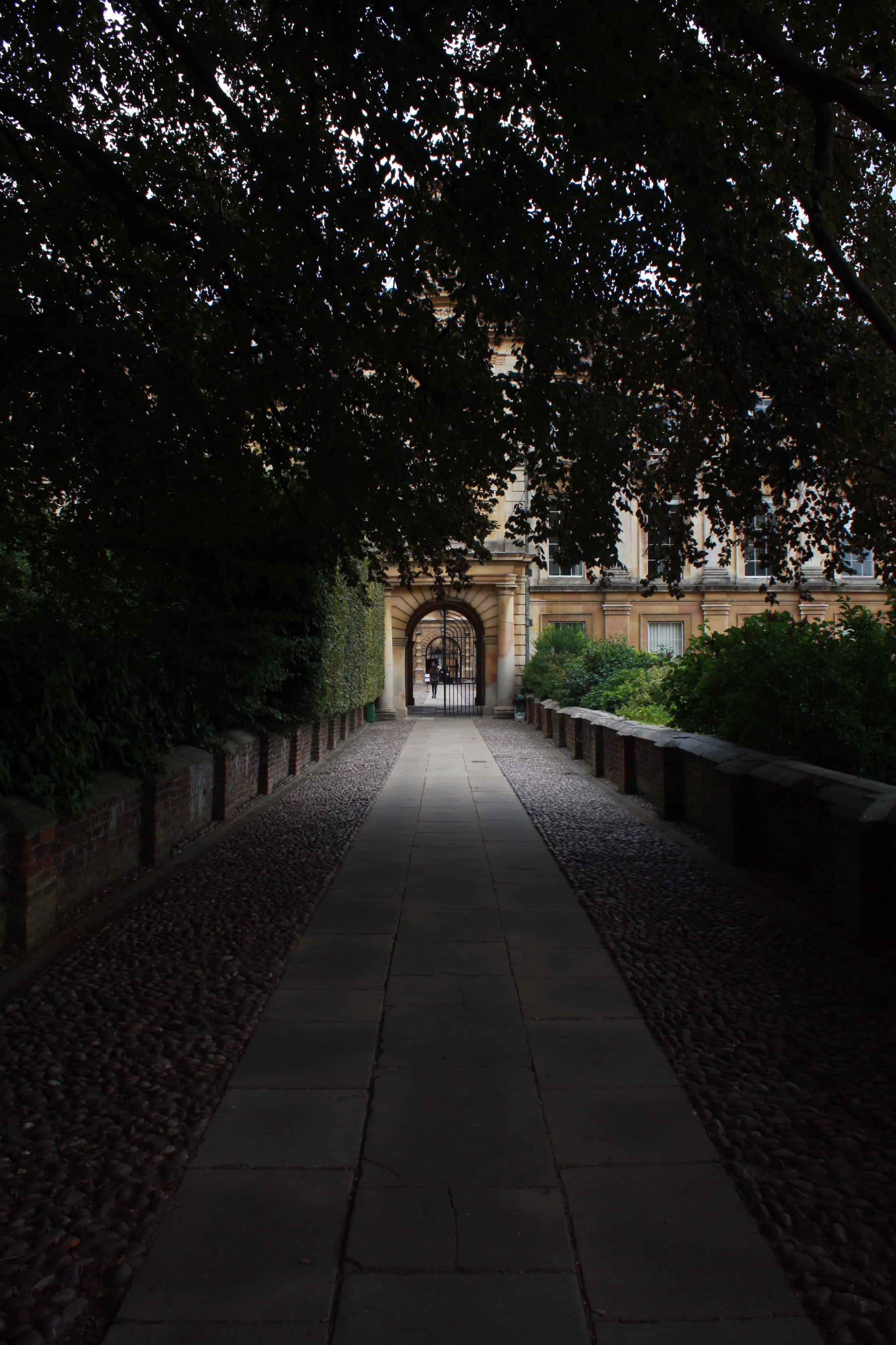 Clare College through the trees