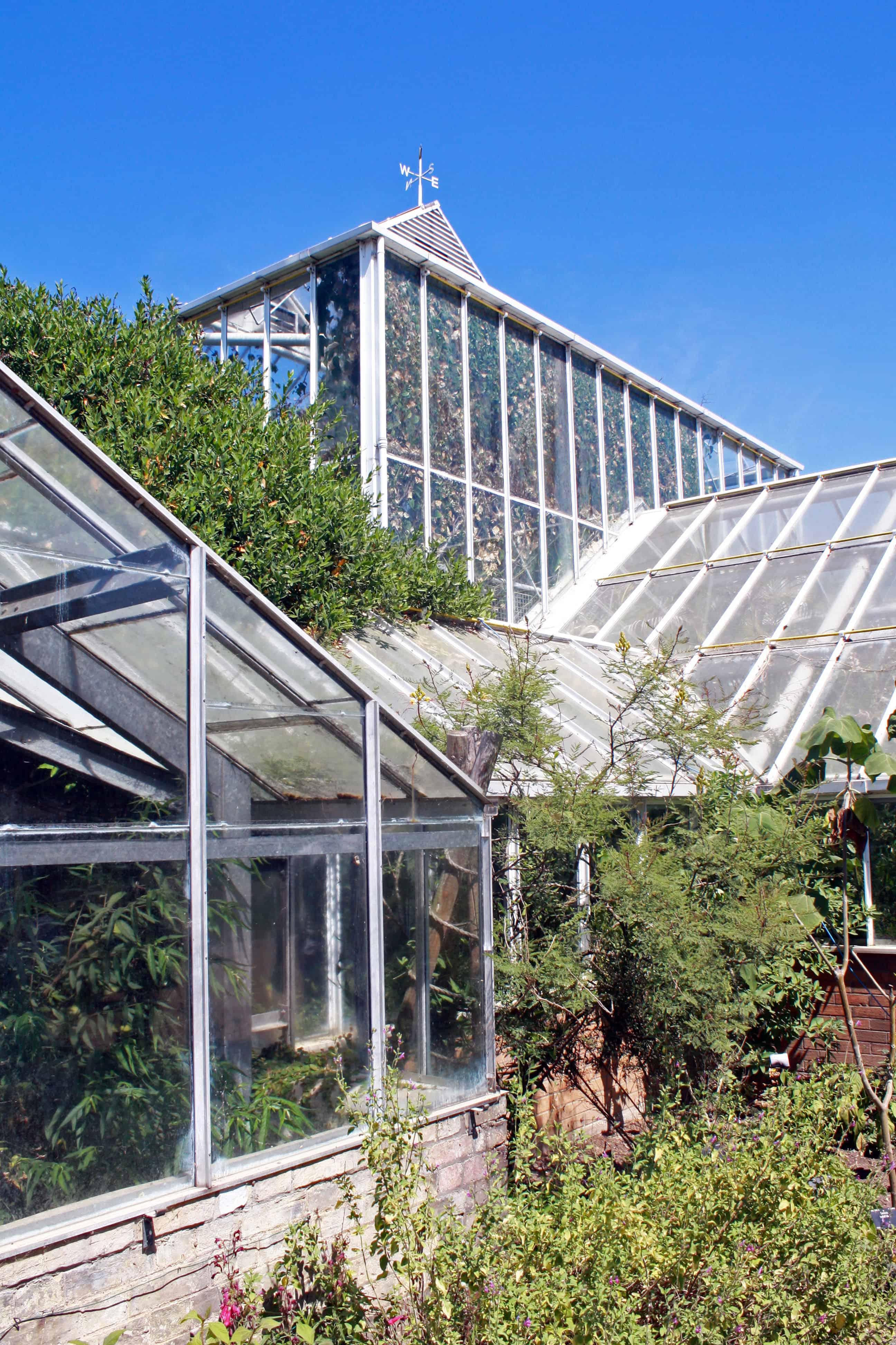 Greenhouse in Cambridge University Botanic Garden
