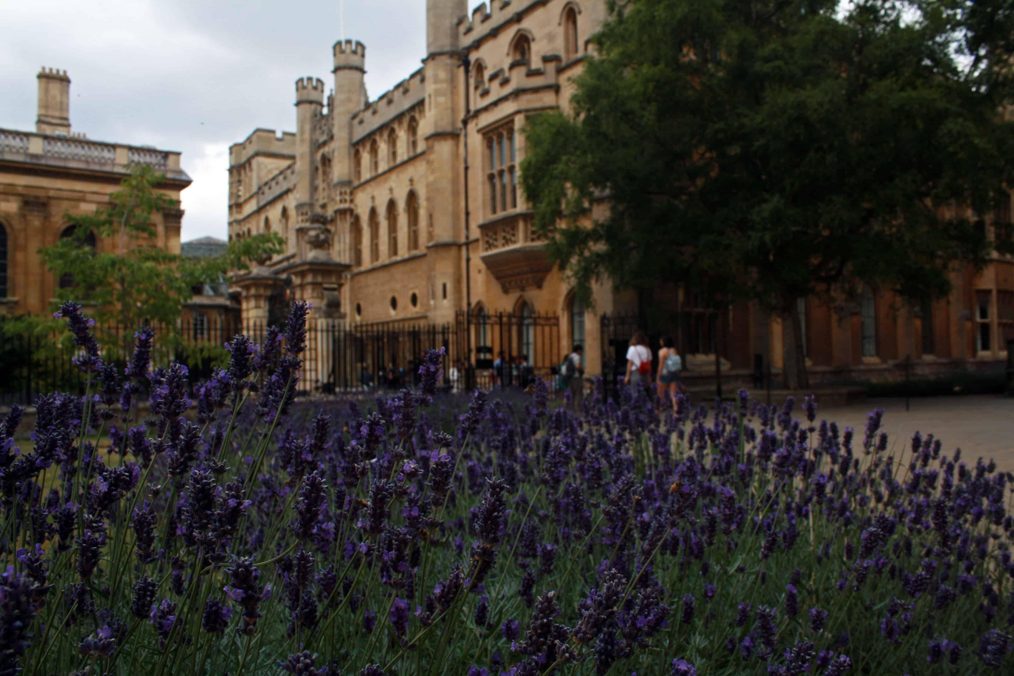University of Cambridge, The Old Schools - Cambridge