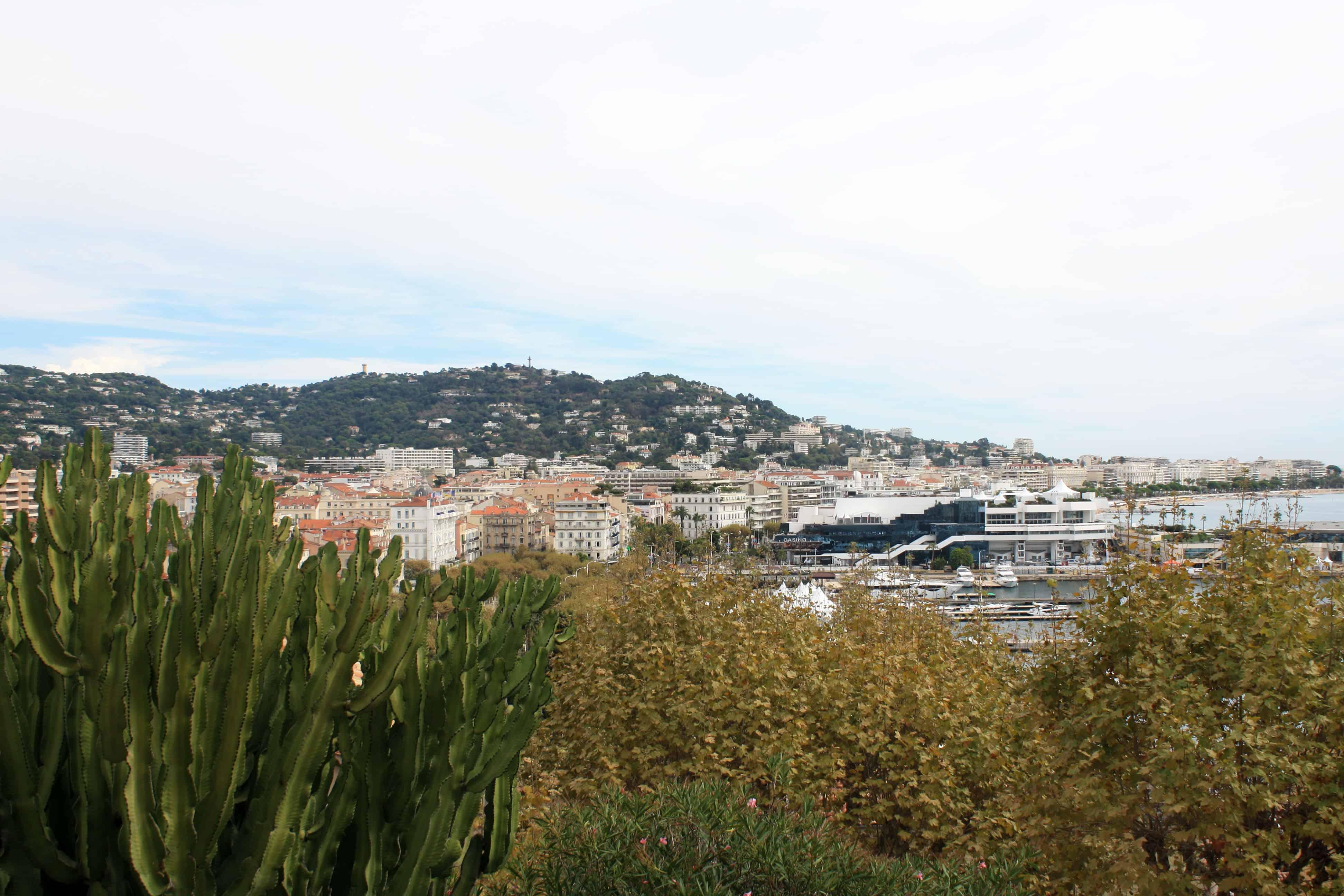 Le Vieux Port Cannes