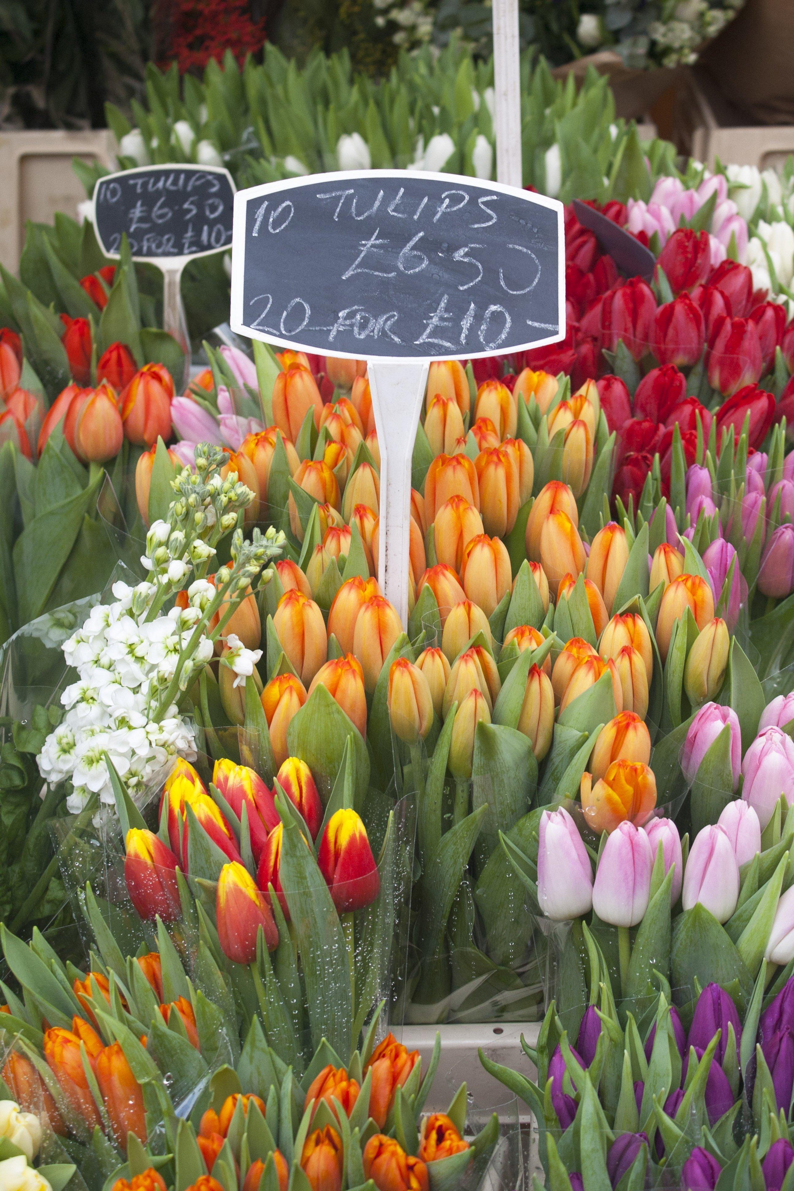 Broadway Market tulips