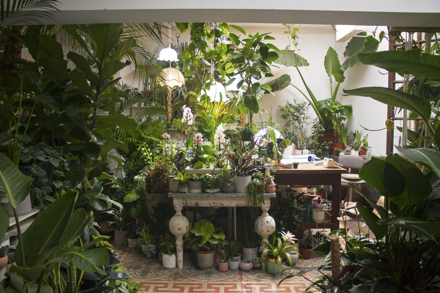 Conservatory Archives, Hackney inside