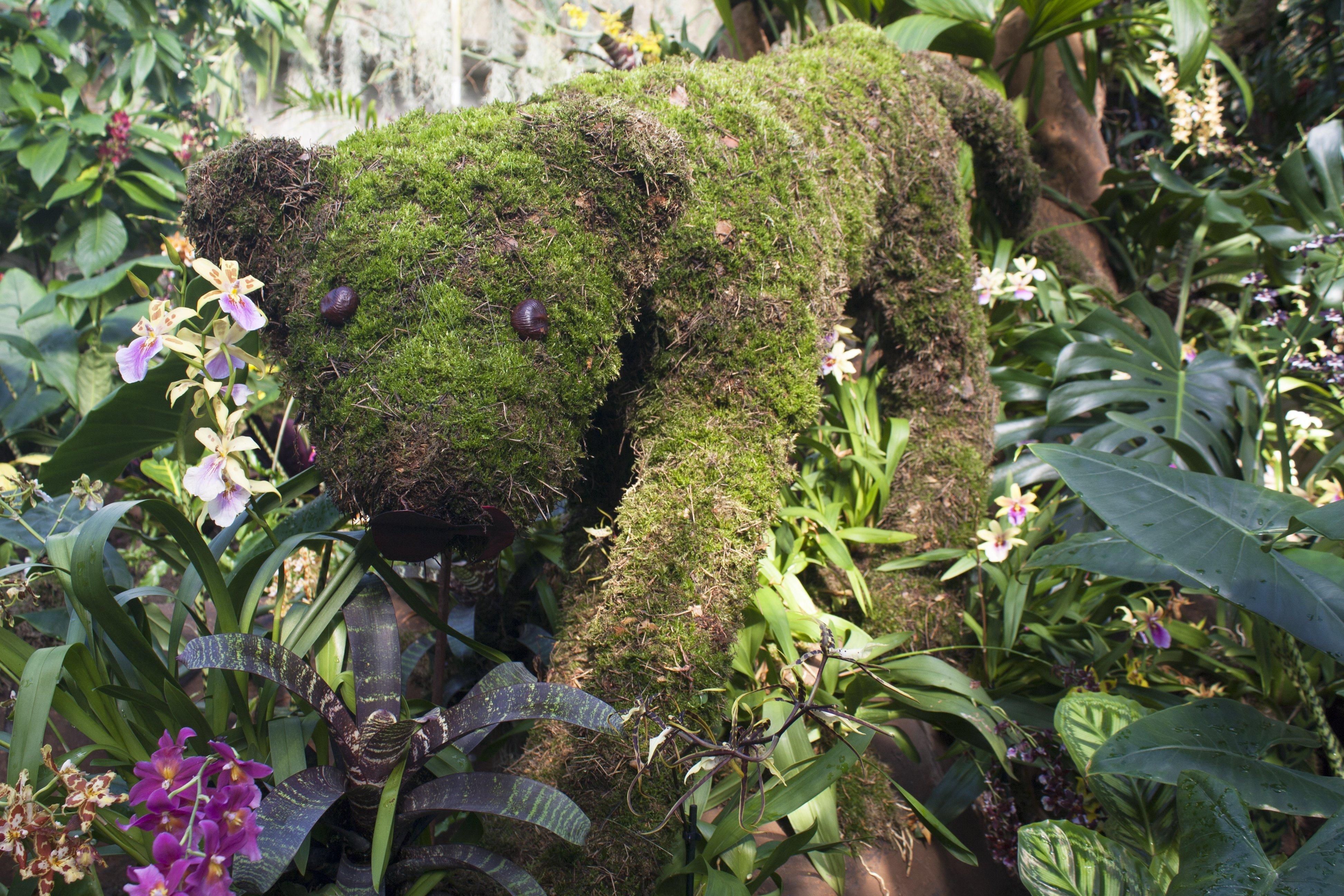 moss jaguar at orchid festival, Kew Gardens