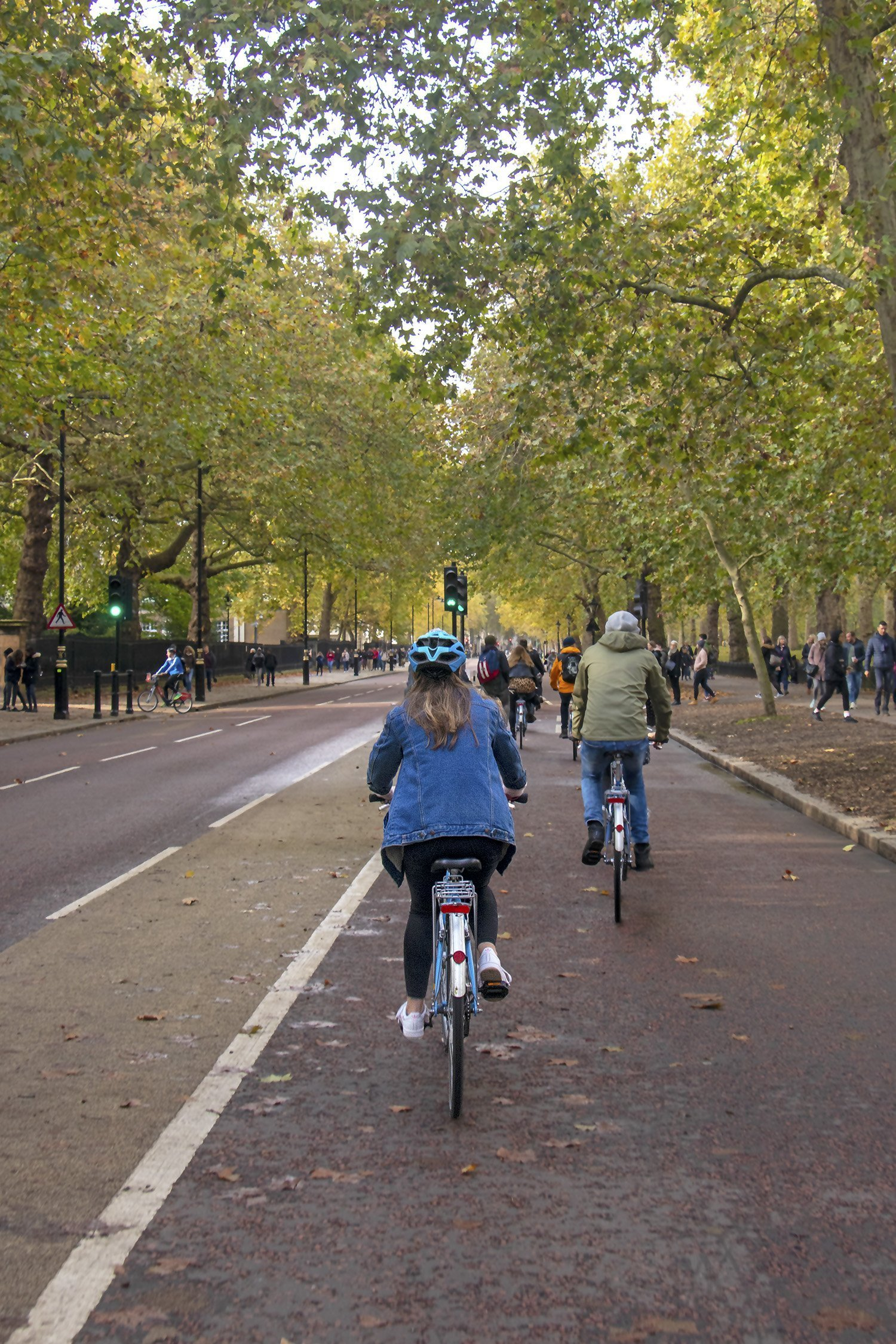 Cycling past St James's Park on a London bicycle tour