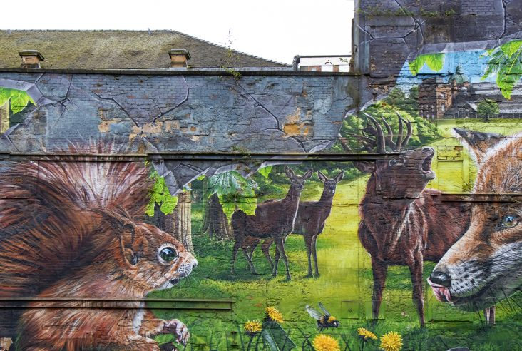 Fellow Glasgow residents - red squirrel, deer and fox graffiti, Glasgow city centre mural trail