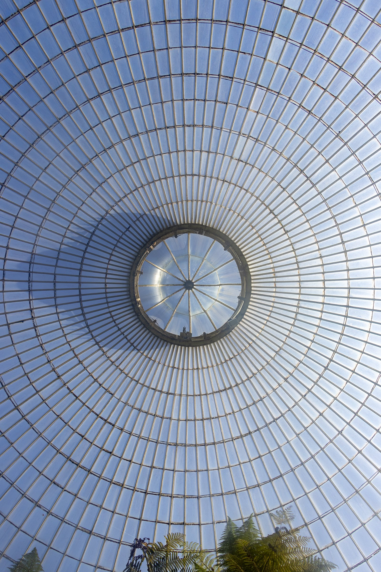 Kibble Palace, Glasgow Botanic Gardens ceiling