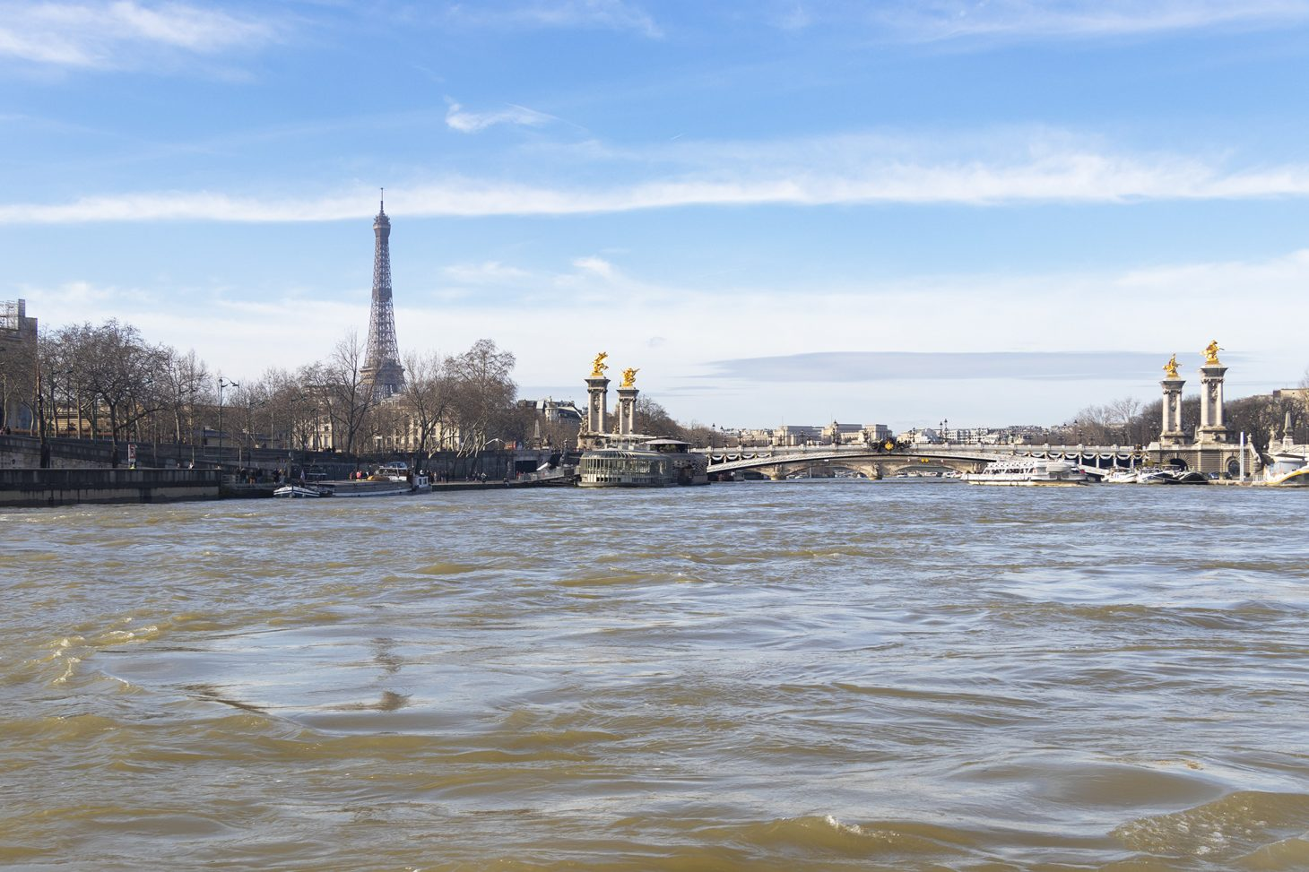 Seine River Cruise with Eiffel Tower, Paris