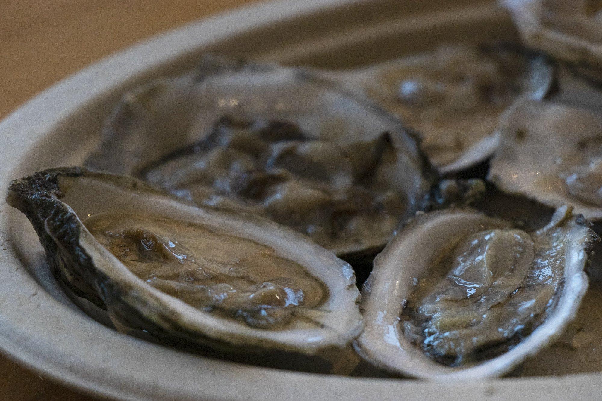 Oysters Boston Public Market