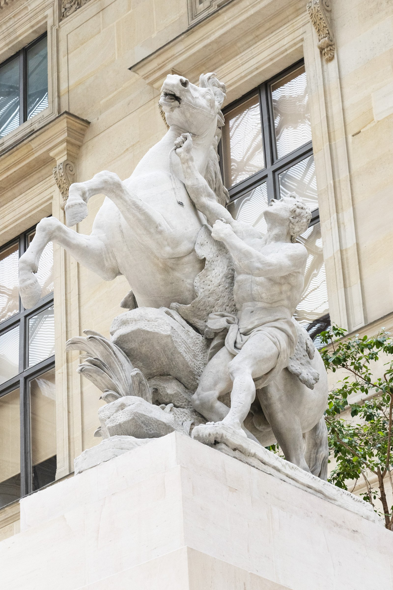 One Marly horse statue - Louvre, Paris