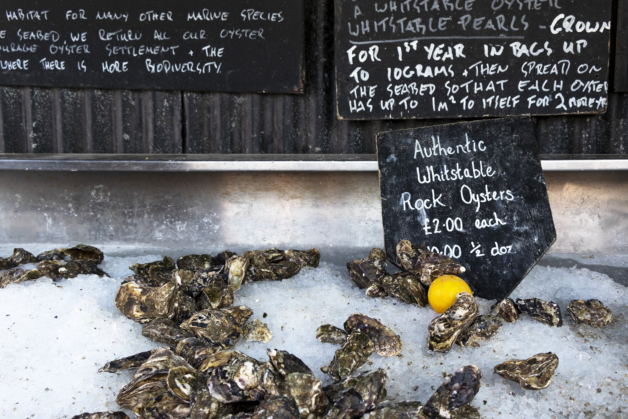 Whitstable oysters at The Forge