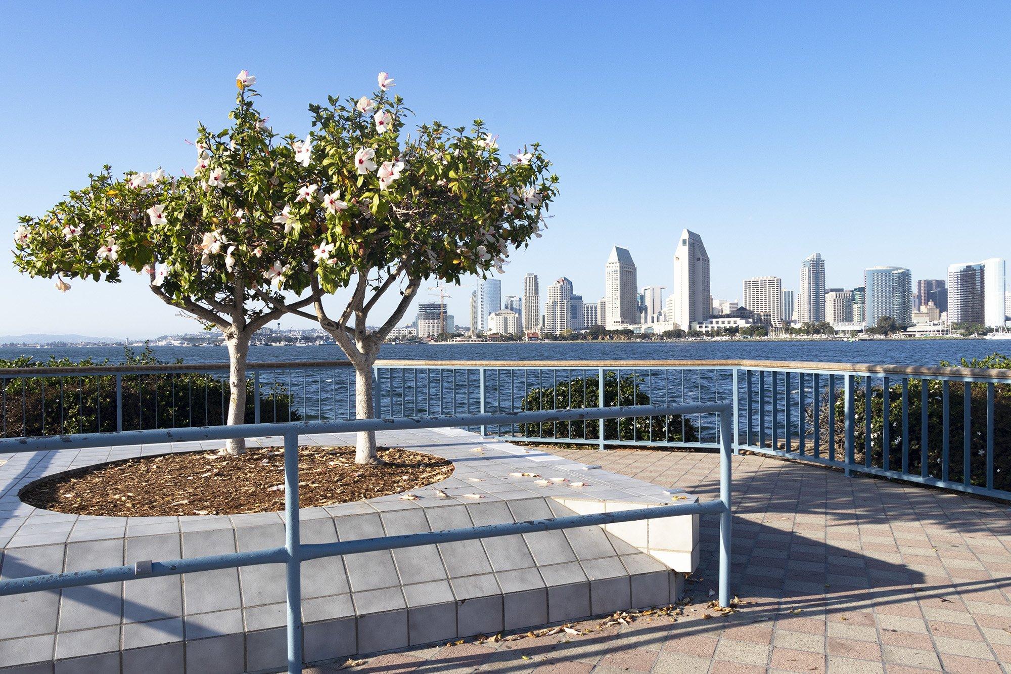 San Diego skyline viewpoint from Coronado Island